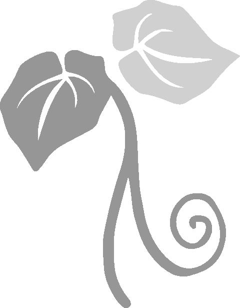 Logo van Heiboer Hoveniers